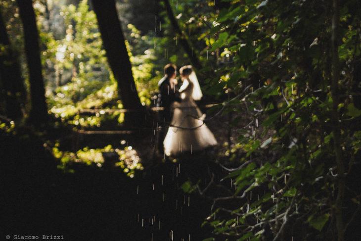Foto in controluce dei due sposi tra la vegetazione, fotografo matrimonio ricevimento villa le molina, san giuliano terme